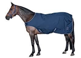 Horse Guard Walker Decke Blau 1