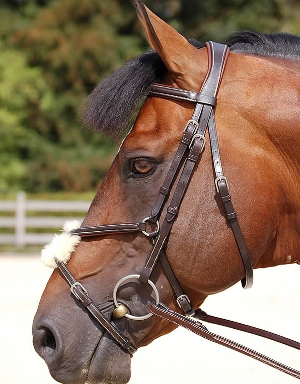 Dy'on Fig 8 Noseband Bridle 1