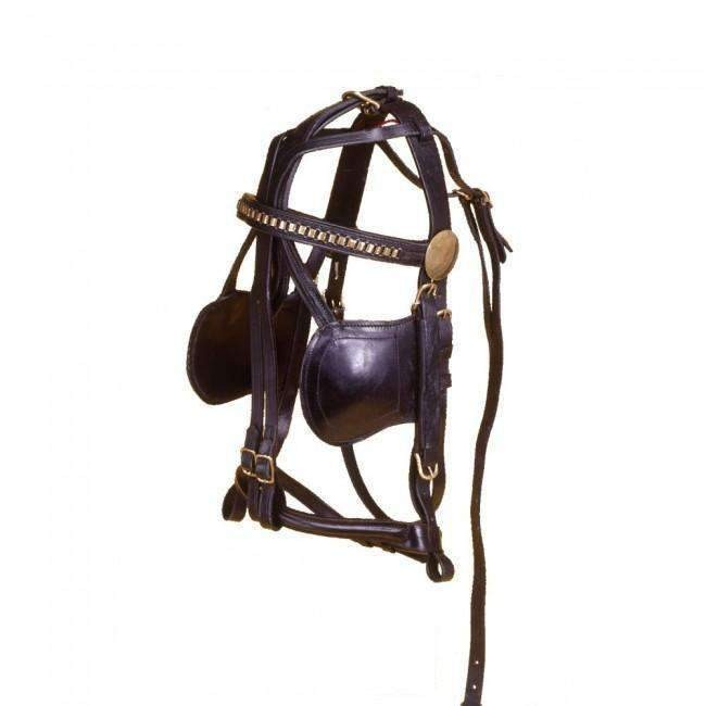 Mini Bridle With Brass Link 1